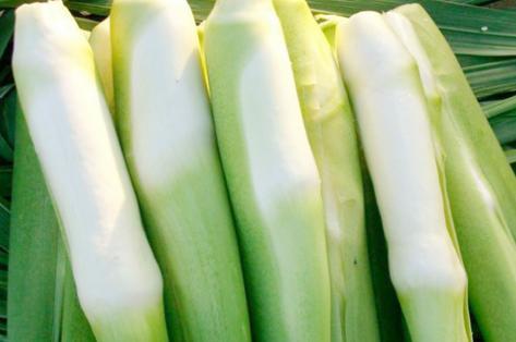 水生蔬菜茭白的贮藏方法都有哪些